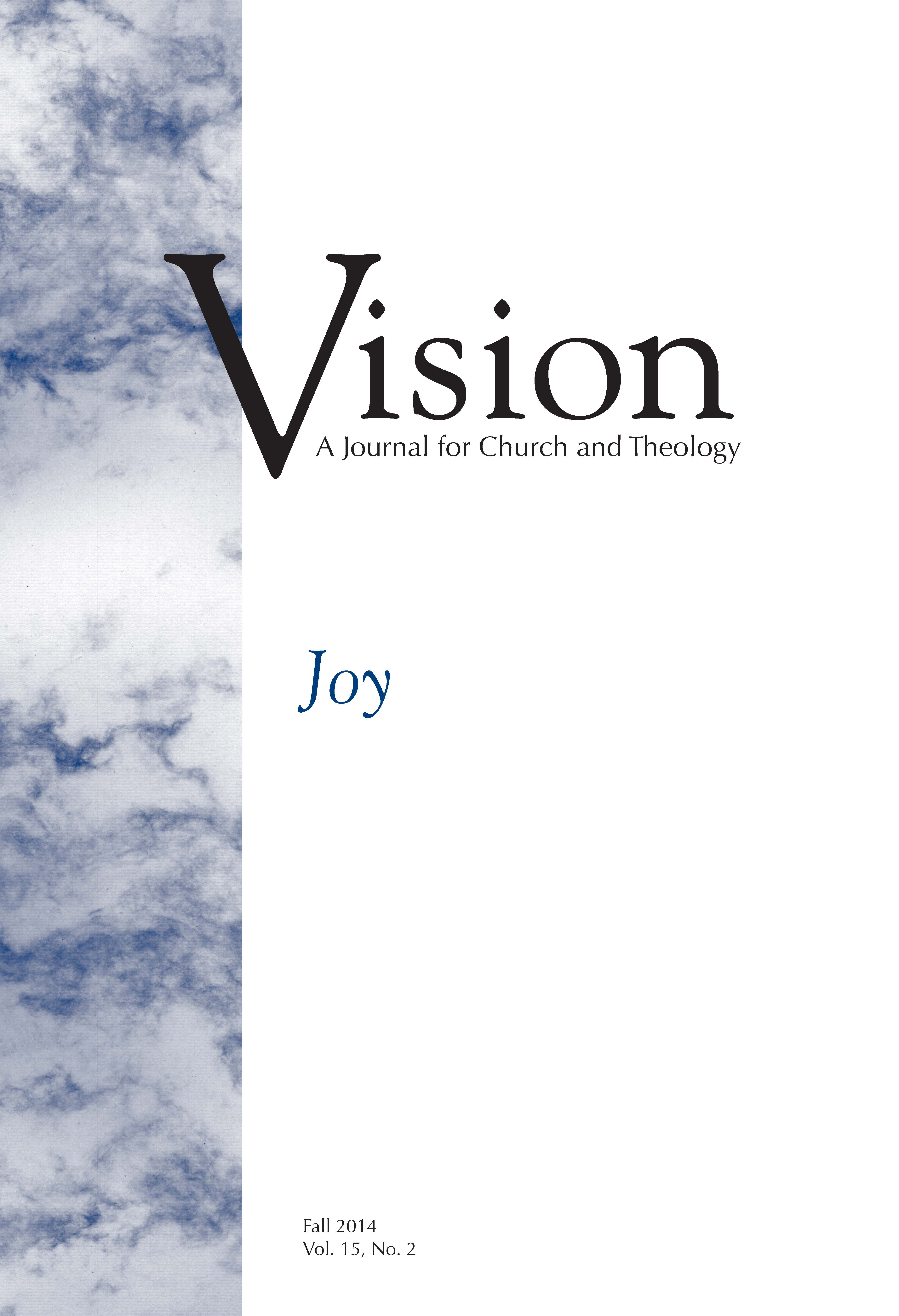 vision cover joy