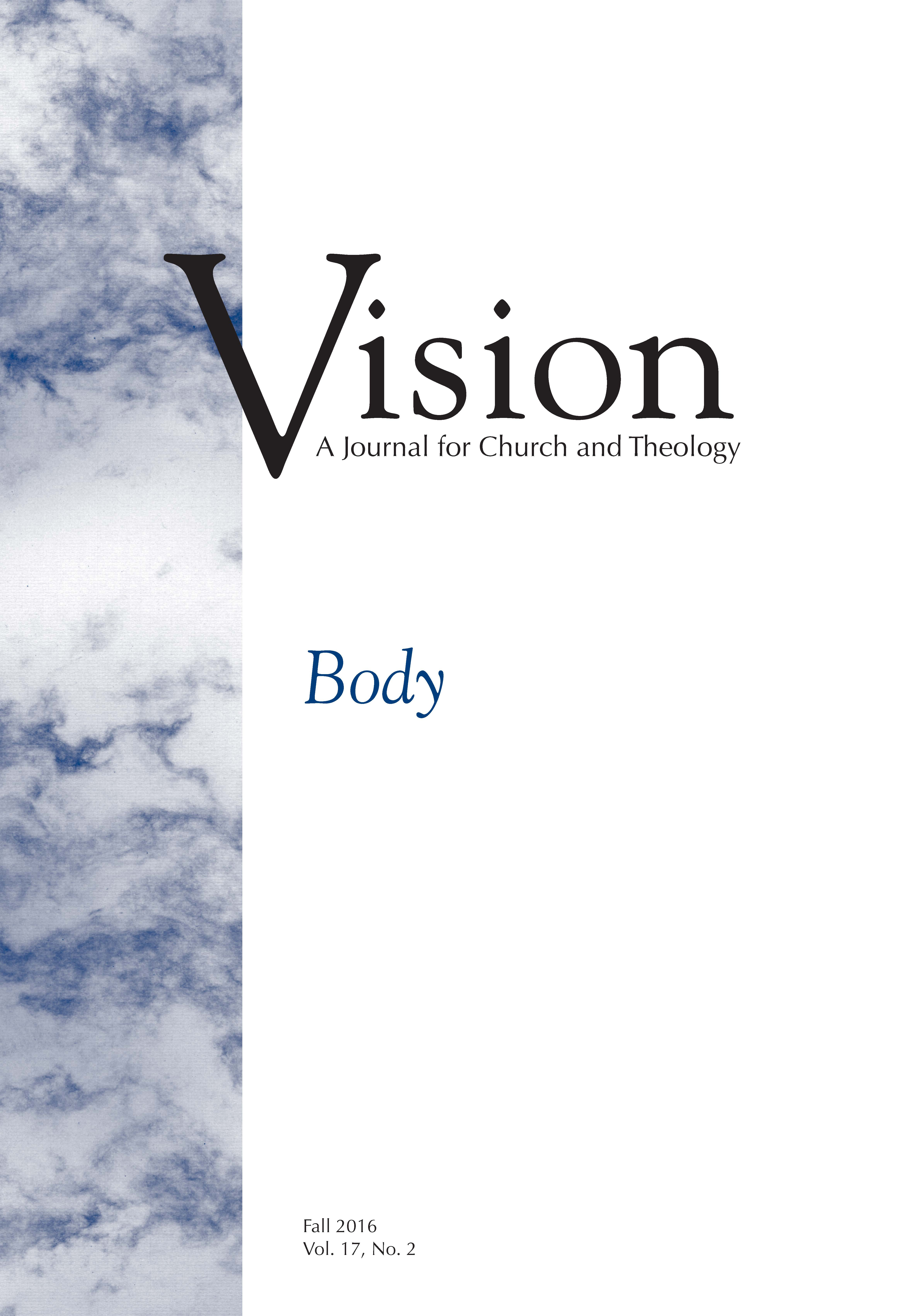 vision cover body